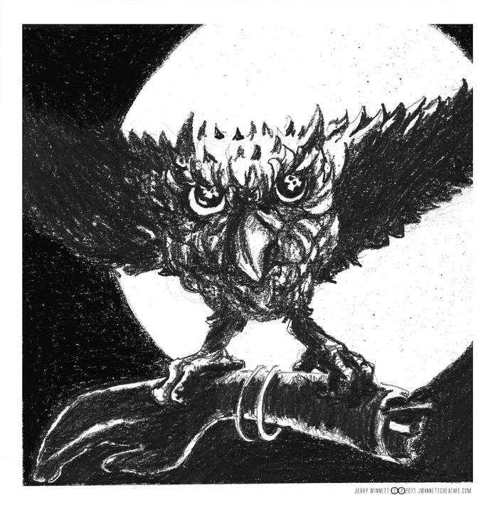 Oct 14 Owl b back sm